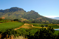Franschhoek Valley, Western Cape